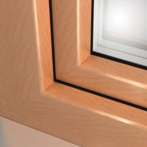okno-brzoza-1